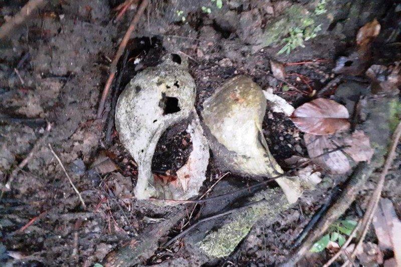 Balai Arkeologi Papua dan BP4D Teluk Wondama temukan Situs Triton di Pulau Roon