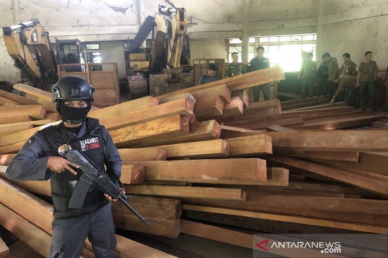 KLHK amankan ribuan kubik kayu ilegal senilai Rp6 miliar