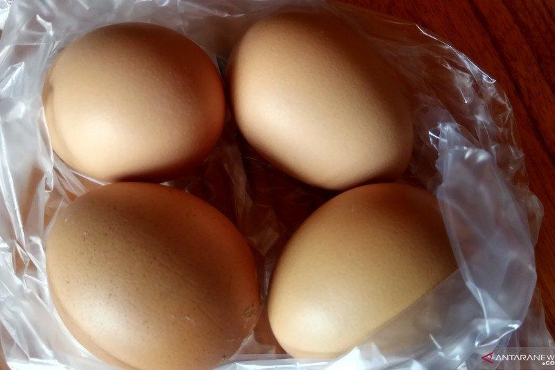Menjelang Natal dan Tahun Baru, harga telur naik