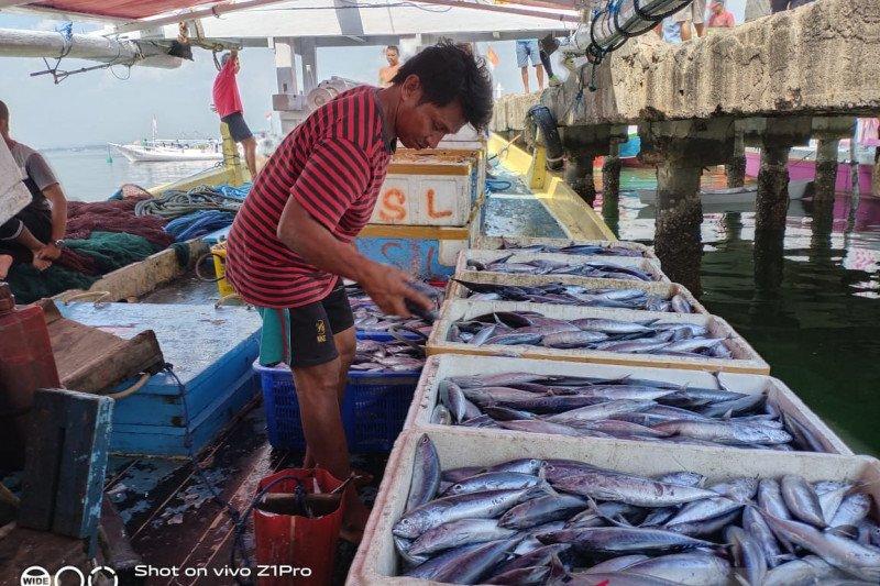 Musim kemarau, nelayan Kendari keluhkan penurunan hasil tangkapan