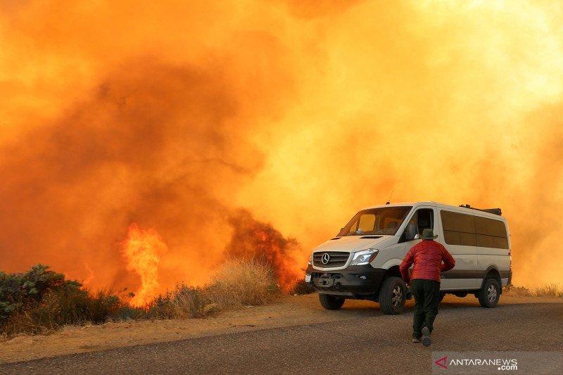 Trump umumkan deklarasi bencana besar atas kebakaran hutan California