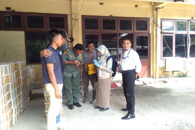 Tim gabungan menggagalkan penyelundupan burung dari Sumatera ke Jawa