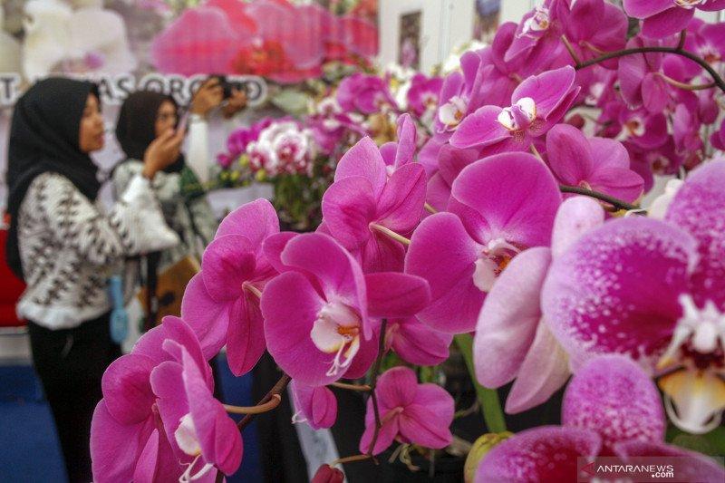Festival Bunga dan Buah Nusantara 2019