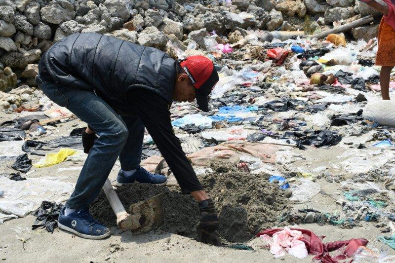 Belasan bangkai kucing ditemukan di pinggir pantai, diduga dibantai orang gangguan jiwa