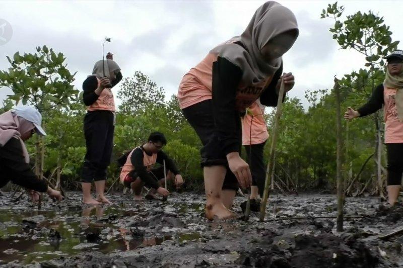 BI ajak genbi tanam mangrove di pantai Celungup