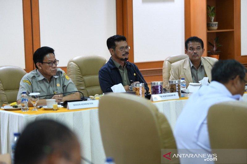 Menteri Pertanian dorong ekspor lewat penguatan sistem klaster