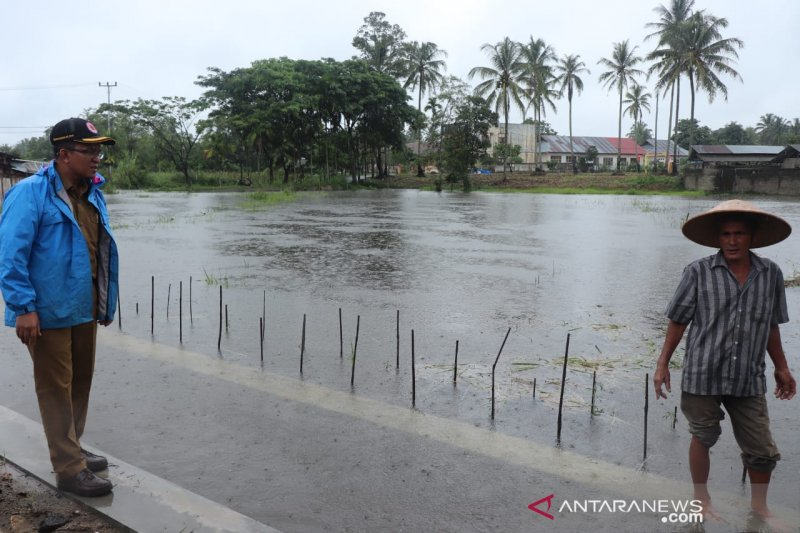 Banjir rendam puluhan rumah dan areal persawahan di Payakumbuh
