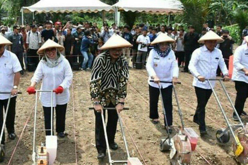 Sulbar miliki lahan kering 623.000 hektare potensial untuk pertanian