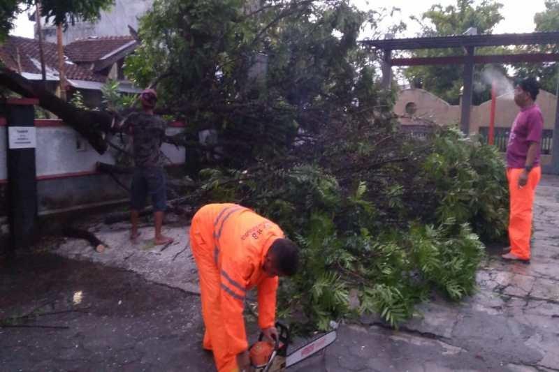Kabupaten Magelang kembali diterjang angin kencang