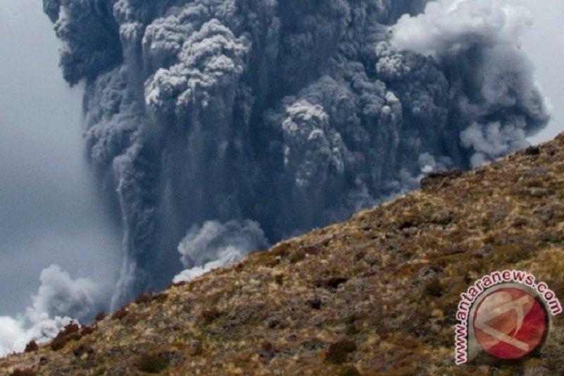 Gunung White Island di Selandia Baru meletus, beberapa orang alami cedera