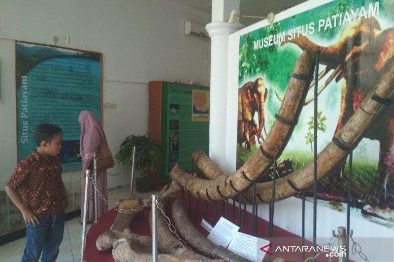 Disbudpar Kudur usulkan anggaran pengembangan Museum Patiayam Rp2,2 miliar