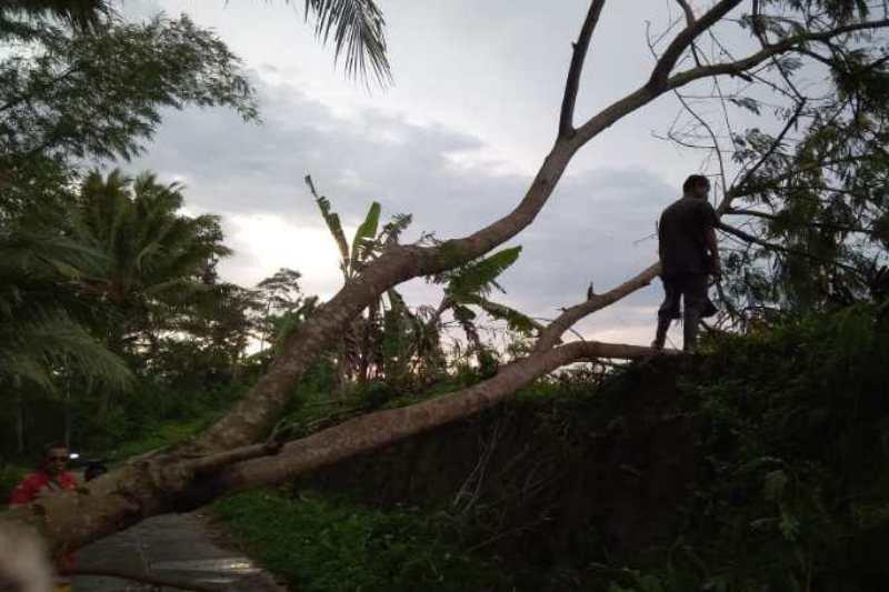 Kabupaten Magelang diterjang angin kencang