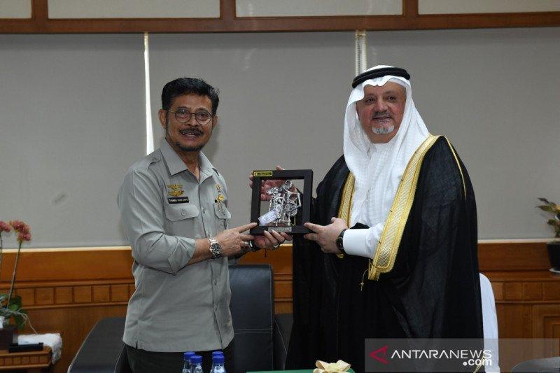 Kementan bekerja sama dengan Arab Saudi untuk ekspor beras