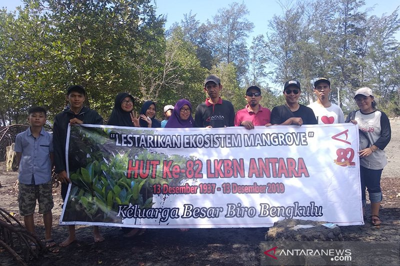 HUT ke-82, LKBN Antara Biro Bengkulu tanam ratusan mangrove