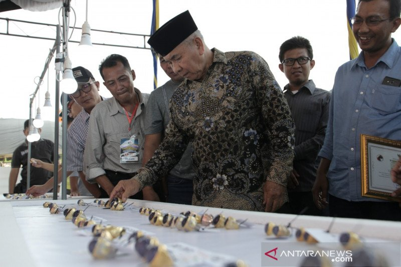 Hari ini ada kontes batu akik dan bazar ikan hias di Baturaja
