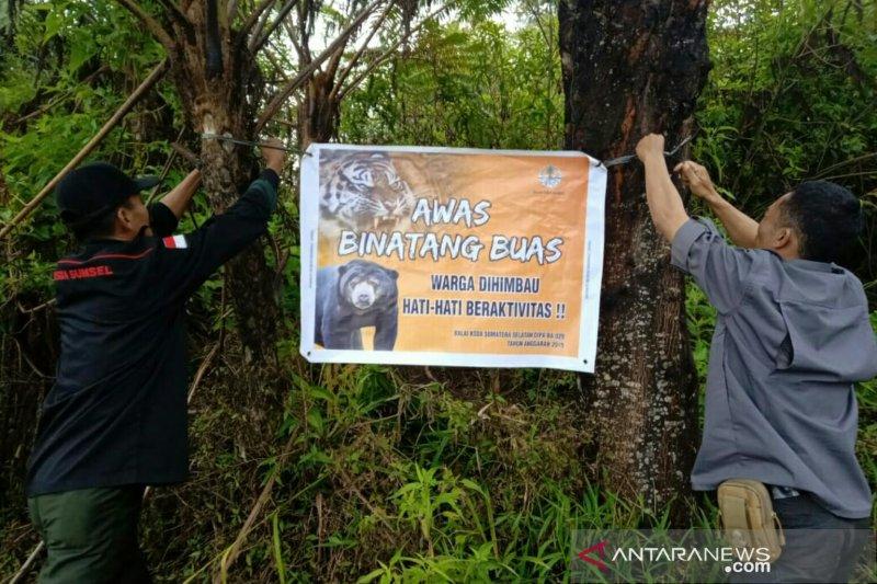 BKSDA Sumsel pasang spanduk peringatan bahaya binatang buas