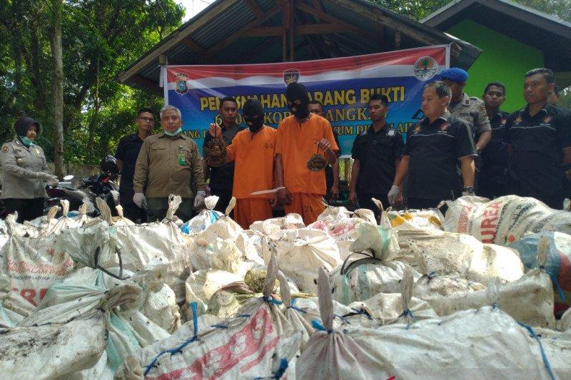 Polisi tetapkan dua tersangka penyelundupan belangkas ke Malaysia