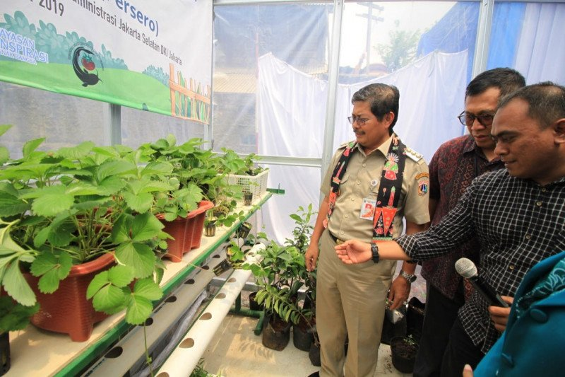 """Kampung Buah Jasindo"" kampung tematik baru hadir di Jakarta Selatan"