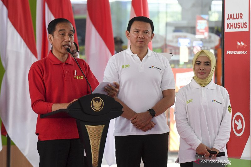Efek berlipat B30 bagi ekonomi Indonesia
