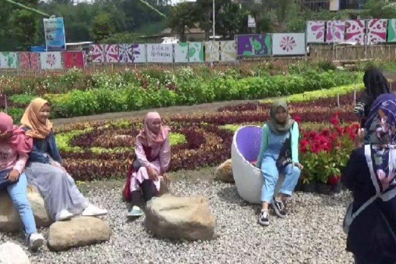 Pemkab Magetan Jatim kembangkan agrowisata baru Taman Bunga Refugia