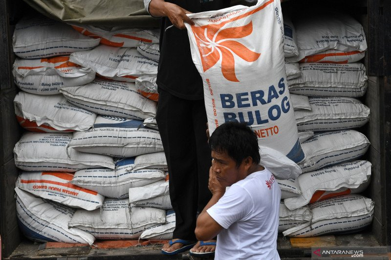Bulog Sulteng hanya mampu serap 60 persen beras petani MP 2019