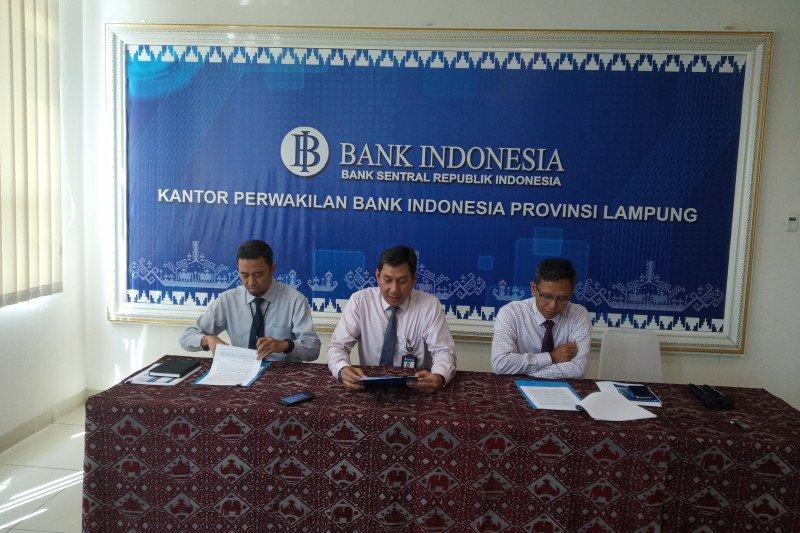 BI sebut konsumsi domestik masih jadi penopang utama ekonomi Lampung