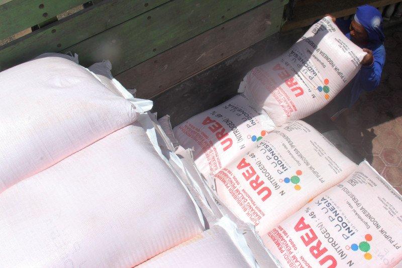 2020, kuota pupuk bersubsidi di Agam berkurang 1.562,27 ton