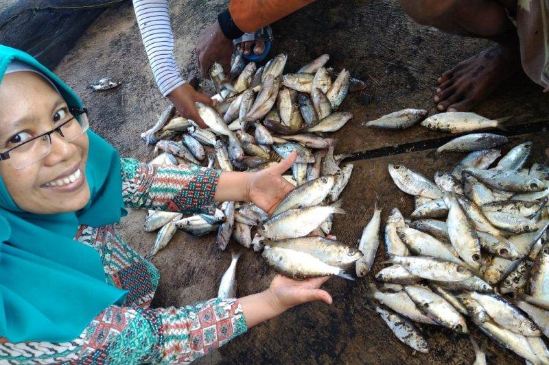 Pakar pangan Unej paparkan tips mencegah keracunan ikan tongkol