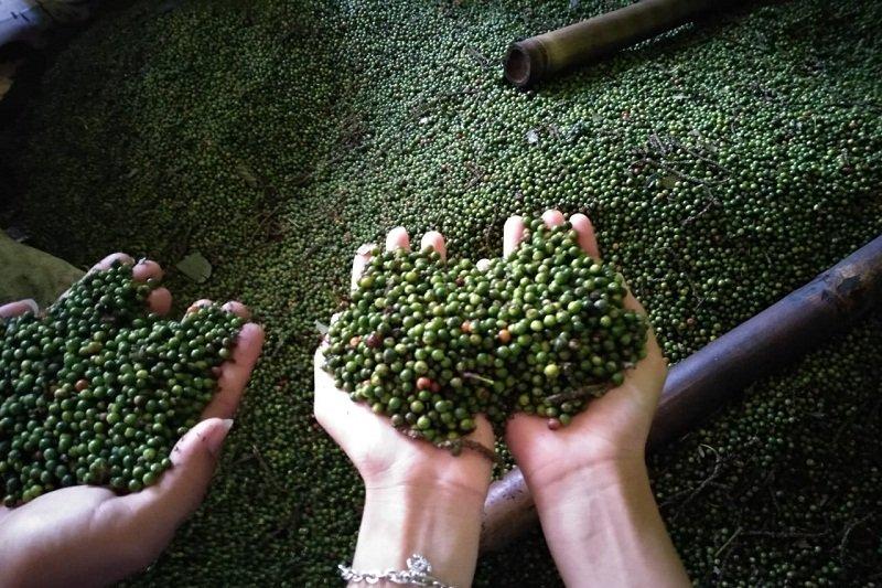 Pengamat : Pasar domestik akan jaga stabilitas perekonomian Lampung