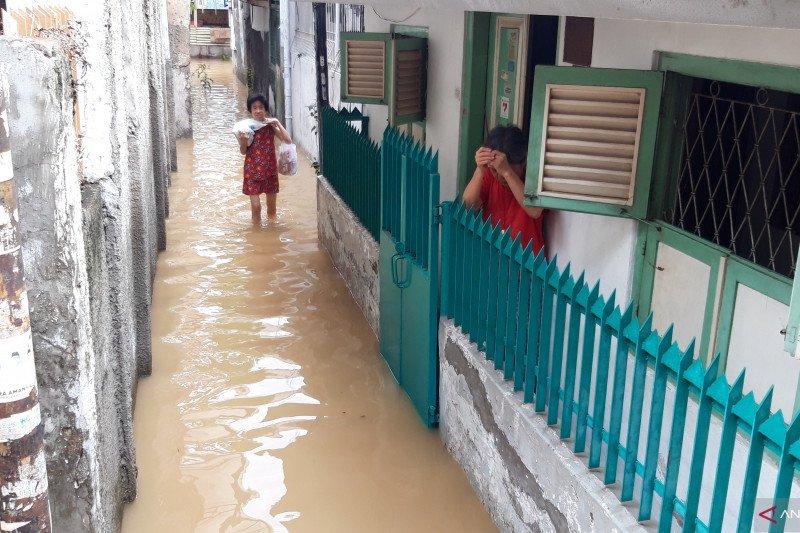 Pakar sarankan pemerintah perbanyak embung cegah banjir
