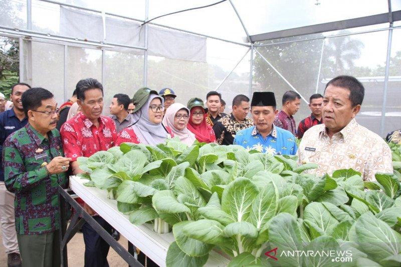 Gubernur Lampung minta Polinela kembangkan hortikultura