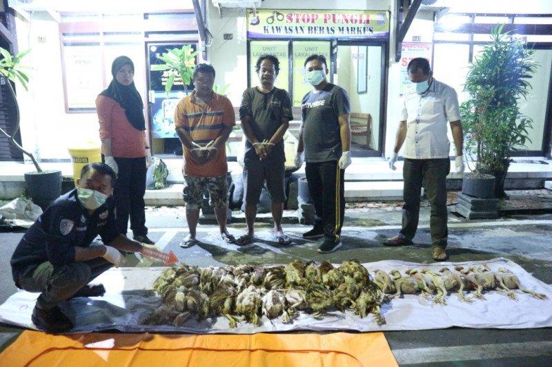 Polisi Blitar bongkar praktik penjualan bangkai ayam