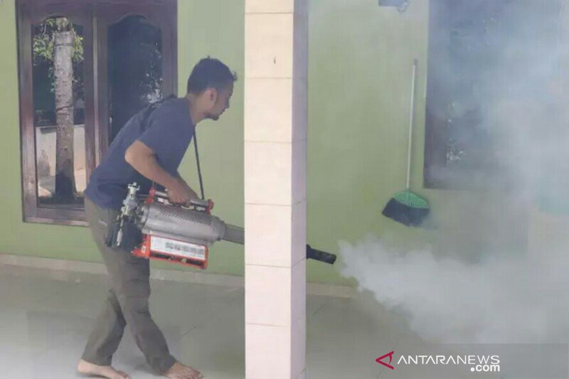 Sebanyak 422 warga Pekanbaru terserang DBD, lima meninggal