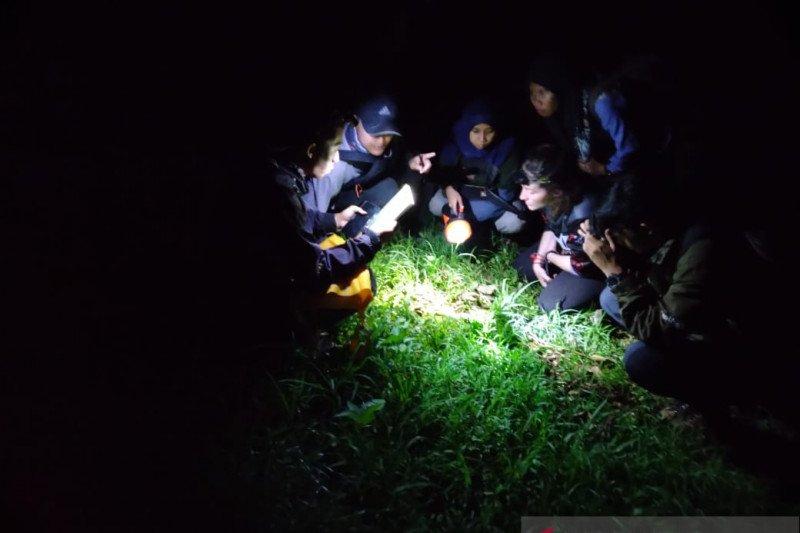 Peneliti Unej dan Virginia Tech temukan amfibi-reptil hutan