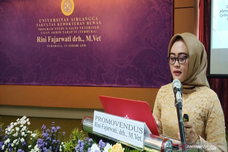 Rini Fajarwati temukan data sidik jari DNA Itik Alabio