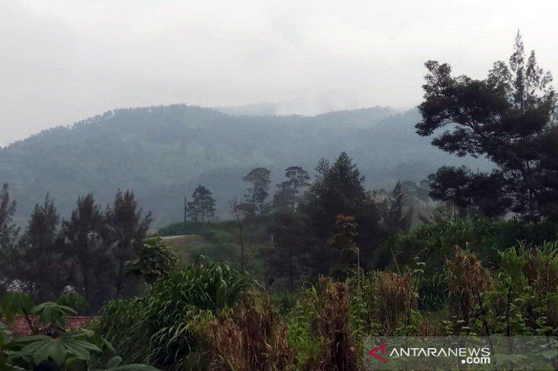 BTNGMb bersihkan jalur  pendakian Merbabu melalui Selo