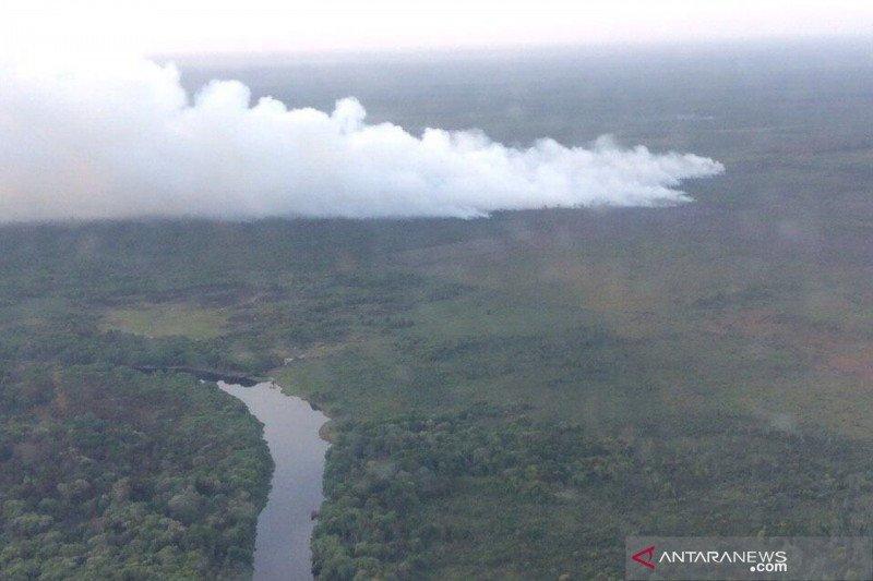 Hutan Suaka Margasatwa  Giam Siak Kecil  terbakar