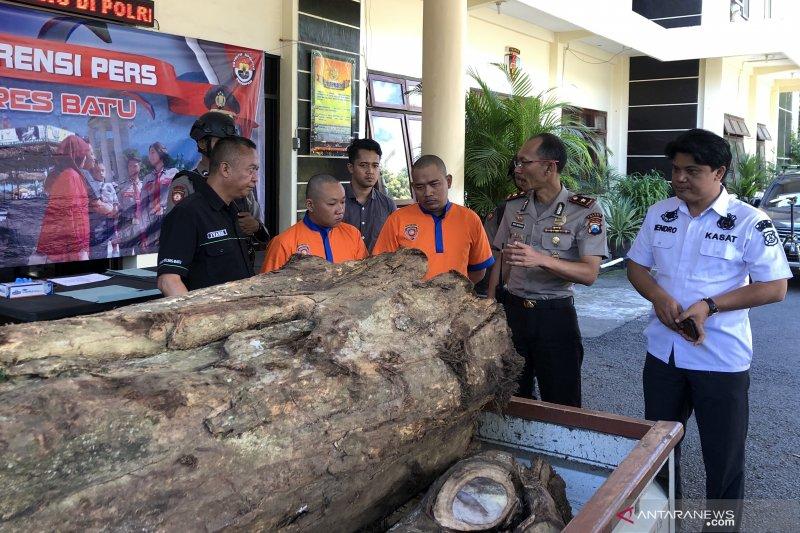 Polres Batu tangkap penjual kayu hasil pembalakan liar