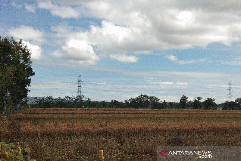 Puluhan hektare sawah di Dlingo Bantul terancam kekeringan