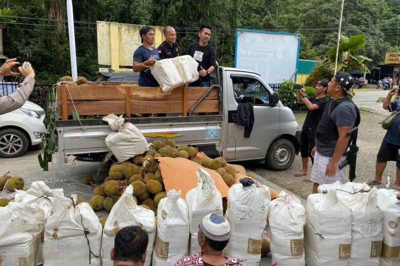 Polisi sita 254 kilogram ganja selundupan lewat truk pengangkut durian