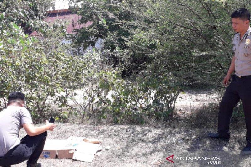 Polisi dalami pelaku pembuang bayi dekat Polda Sulteng