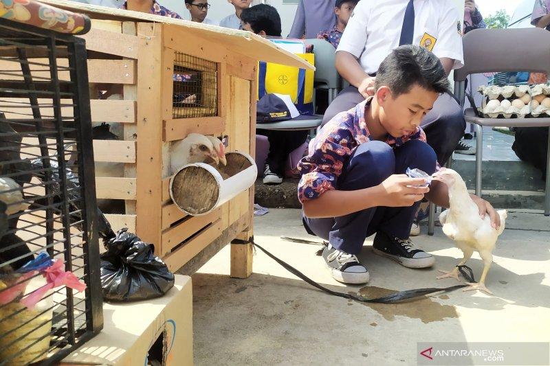 Wali Kota: Pelihara ayam, kurangi ketergantungan anak terhadap gawai