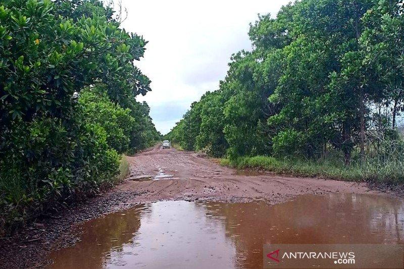 Pemkab Sukamara perbaiki jalan Lunci-Jelai pada tahun 2020