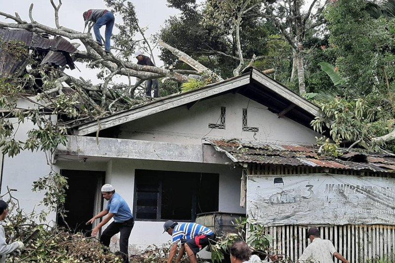 Rumah dan warung warga di Agam rusak parah tertimpa pohon akibat angin kencang