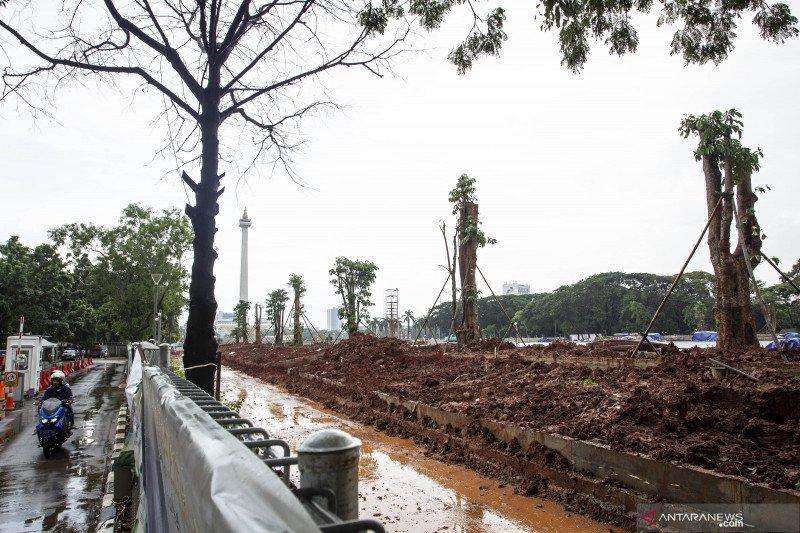 Revitalisasi Monas, 191 pohon ditebang diindikasikan