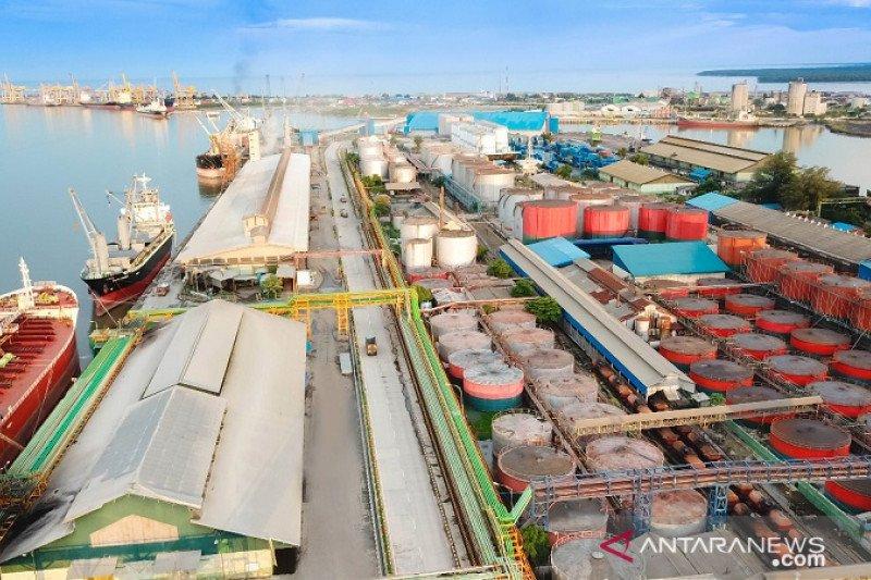 Ekspor CPO via Pelabuhan Dumai 4,75 juta ton terbesar di Sumatera