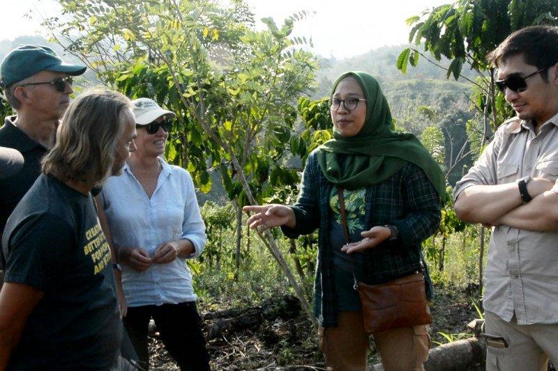 Rainforest Alliance bekerja sama dampingi kelola perhutanan sosial