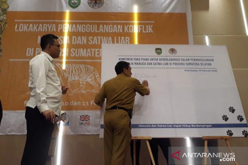 BKSDA : Populasi harimau di Sumatera Selatan 17 ekor