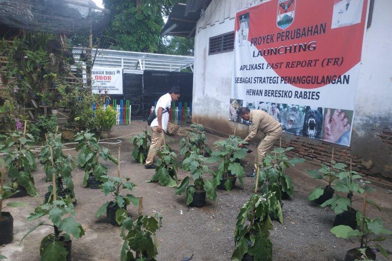 Warga Minahasa Tenggara diminta manfaatkan pekarangan