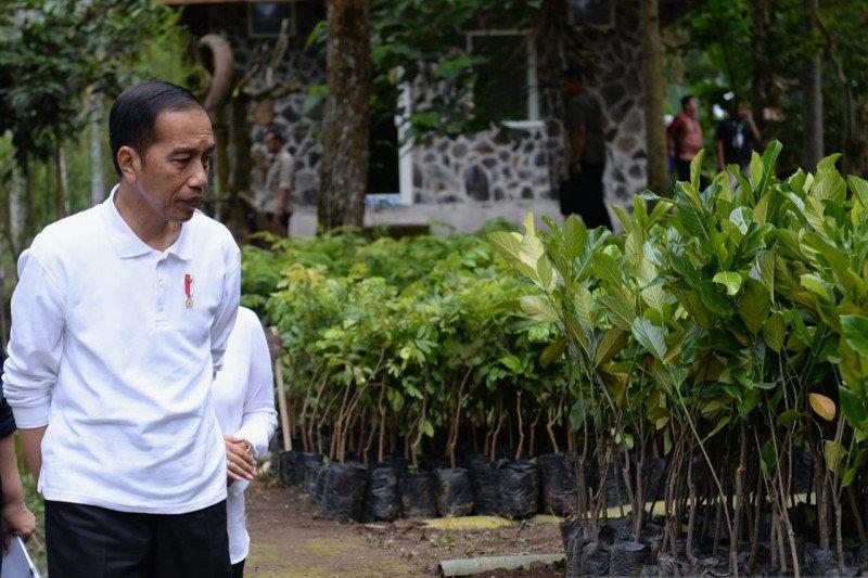 Presiden: WNI yang telah menjalani observasi di Natuna dalam keadaan sehat